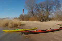 Paddeln für Mitglieder auf der Elbe 3