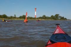 Paddeln für Mitglieder auf der Elbe 1